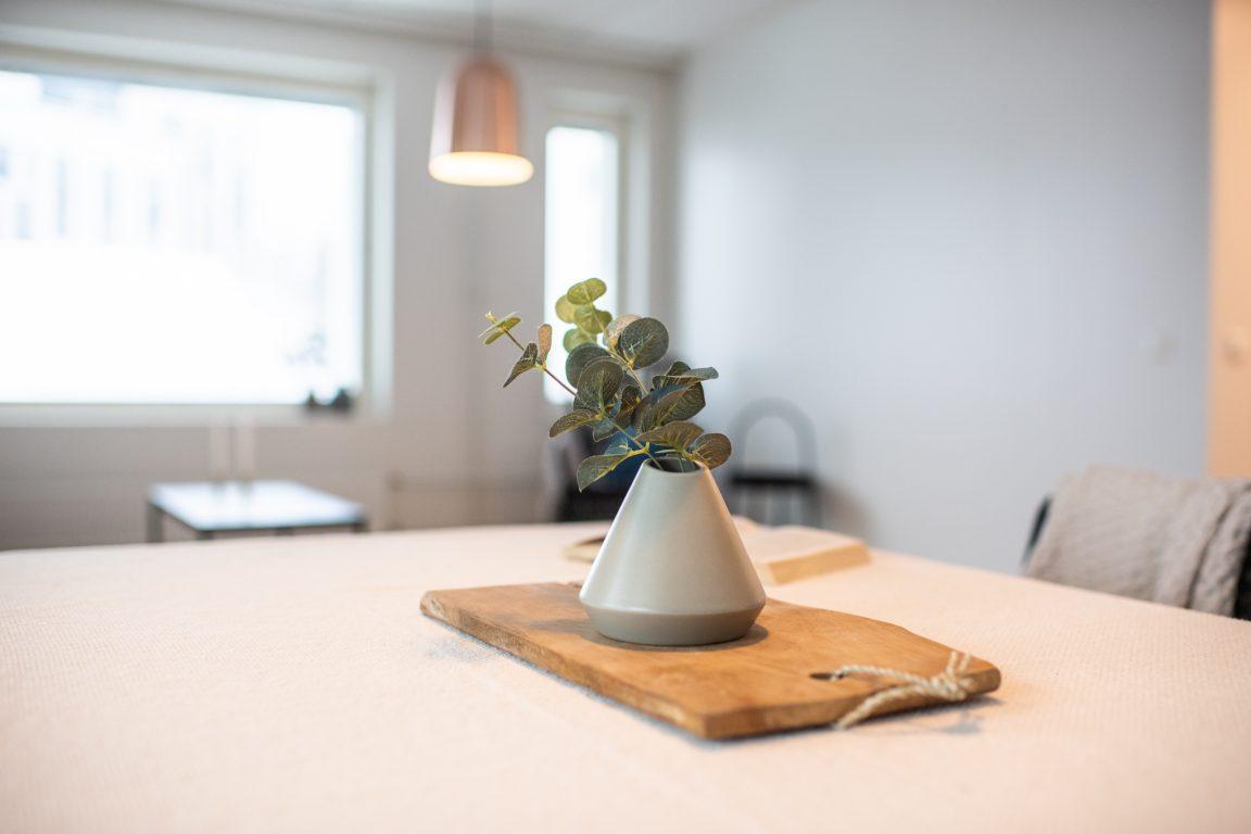 Vantaan Sikaani keittiön fiiliskuva