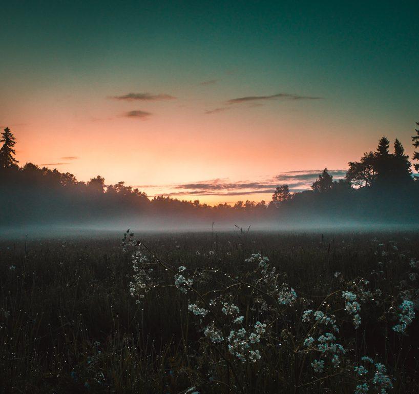 Turku ruissalon maisema